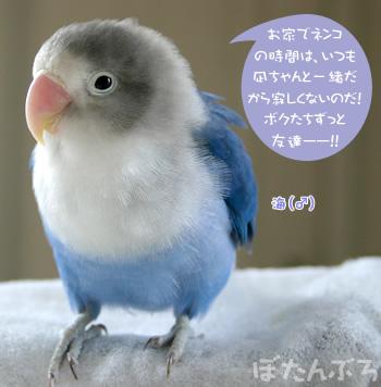 20060829_02.jpg