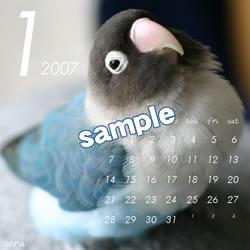 20061115_01.jpg