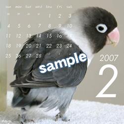 20061115_02.jpg