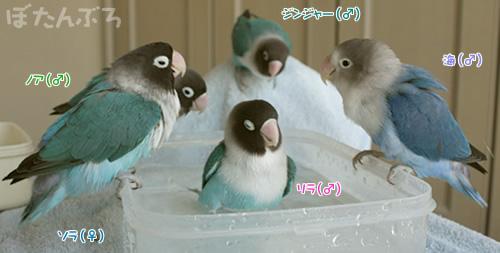 20081204_03.jpg