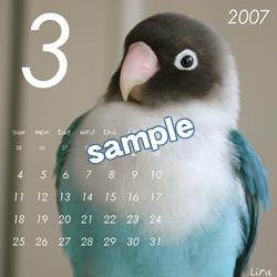 20061115_03.jpg