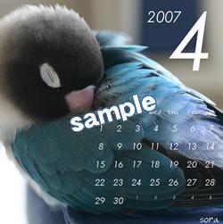 20061115_04.jpg