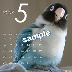 20061115_05.jpg