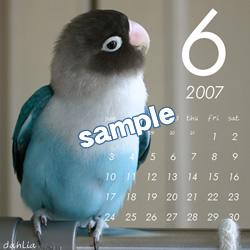 20061115_06.jpg