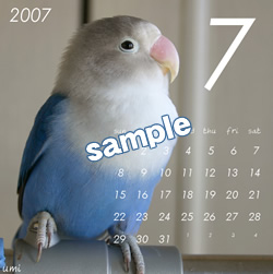 20061115_07.jpg
