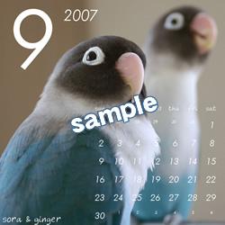 20061115_09.jpg