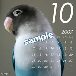 20061115_10.jpg