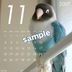 20061115_11.jpg