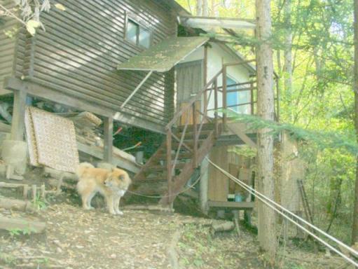 2010-10-18 山小屋デッキ階段増設