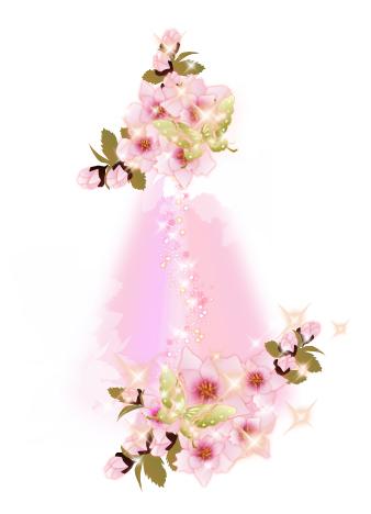 cherryblossoms4-2009-1.jpg
