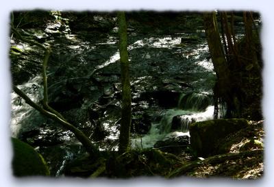 るり渓3.jpg