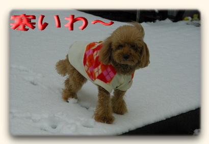雪の日6.jpg