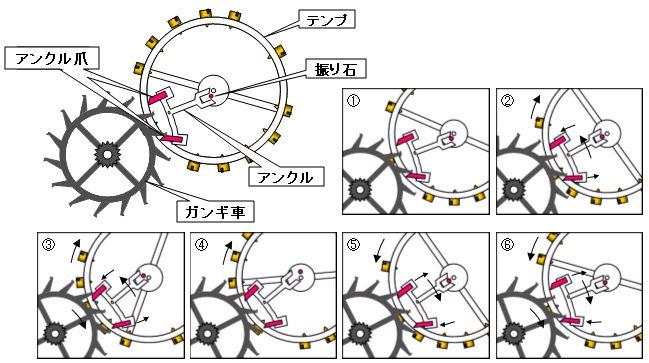 テンプとアンクルの動作説明