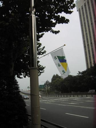 何処かの国の旗ですか?.JPG