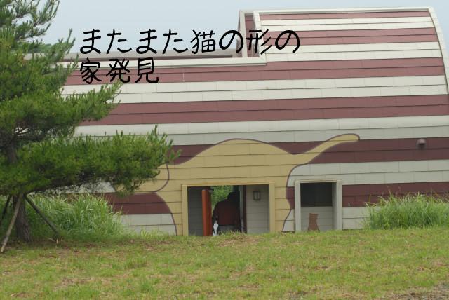 田代島ブログ用D200撮影 102.jpg