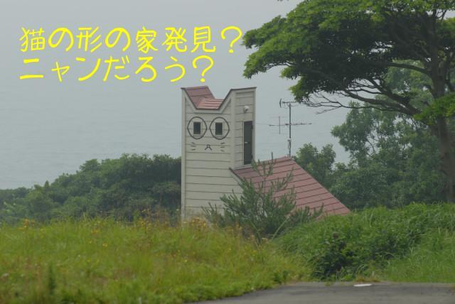 田代島ブログ用D200撮影 103.jpg