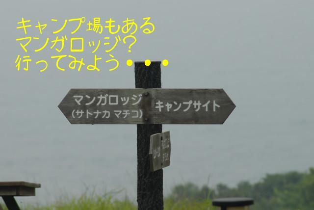 田代島ブログ用D200撮影 104.jpg
