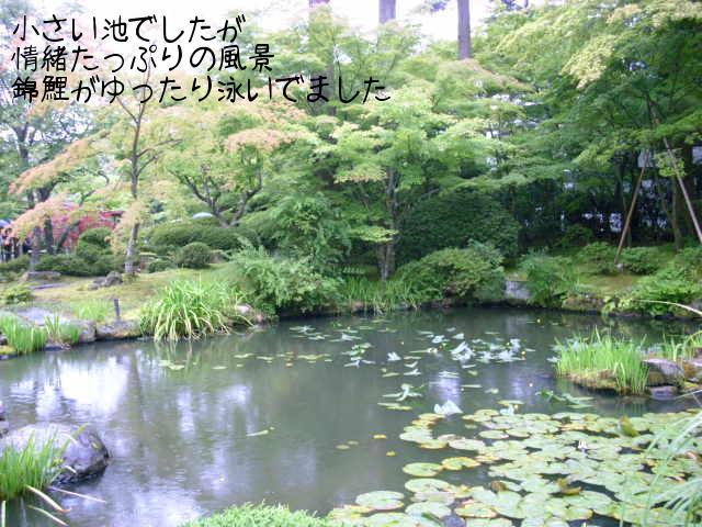 ブログ用写真 062.jpg