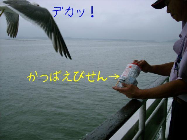 ブログ用写真 016.jpg