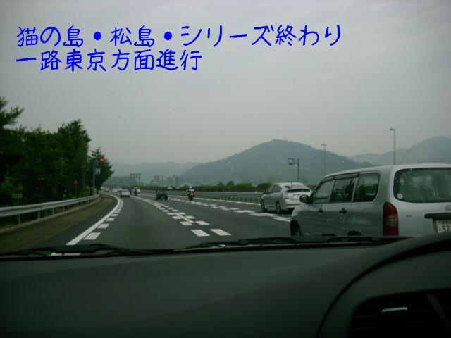 ブログ用写真 002.jpg
