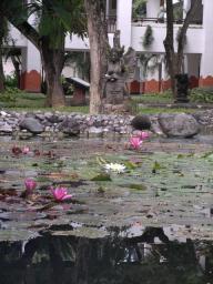 蓮の花と仏像