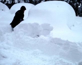 車は雪だるま.jpg