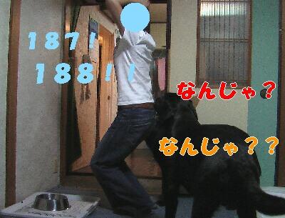 IMGA0626.JPG