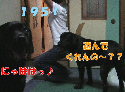 IMGA0627.JPG