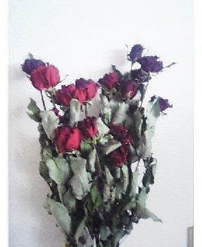 薔薇のドライフラワー2