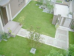 梅雨明けの芝生