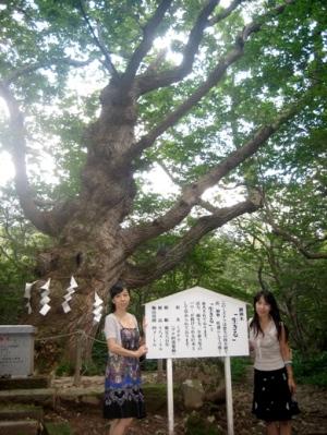 温泉神社 「生きる」