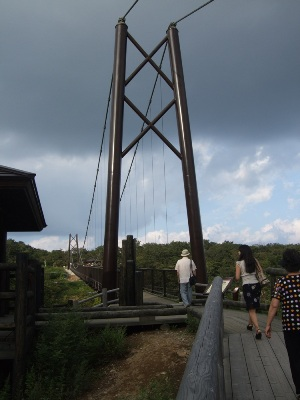 つつじ吊橋