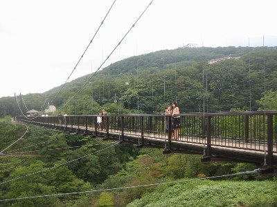 吊橋 姉と