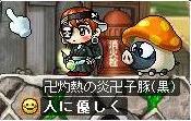 Maple0011.JPG