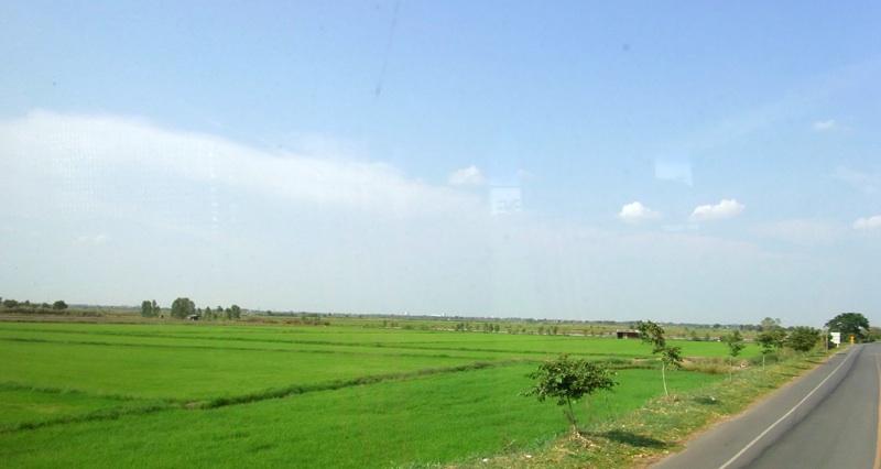 アユタヤの田園風景
