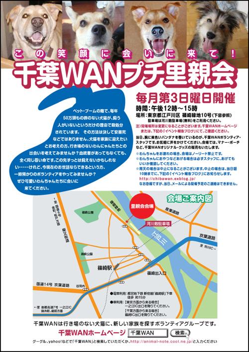 chibawan_satooyakai_shinozaki_poster_jpg.jpg