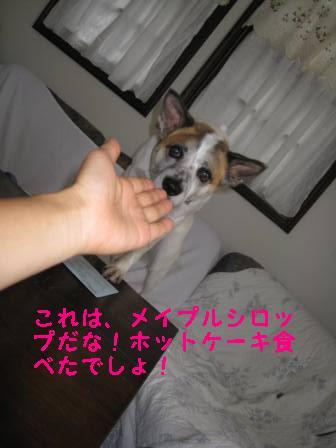 笑顔 011.jpg