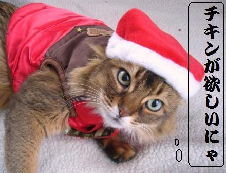 サンタさんにおねだり♪♪