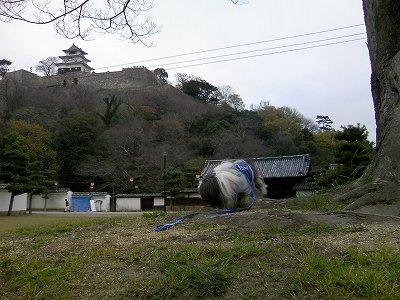 丸亀城にて3