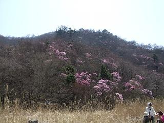 栃木 月山