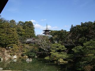 仁和寺の5重塔