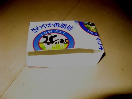 カメ3.JPG