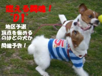 闘魂2.jpg