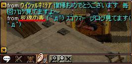 マグロ5.jpg