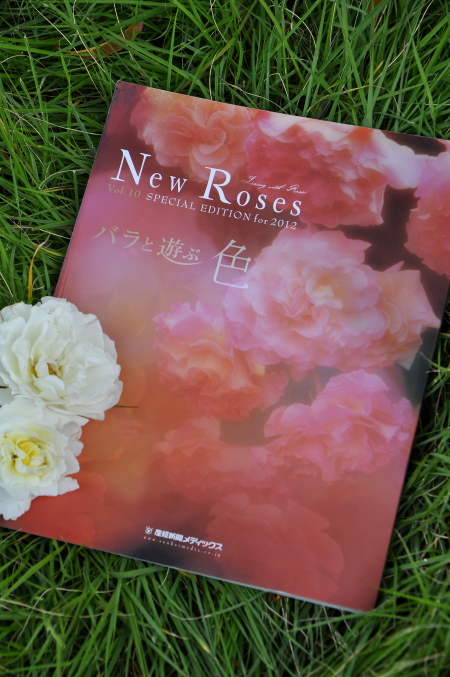 new roses special edition for 2012-blog.jpg