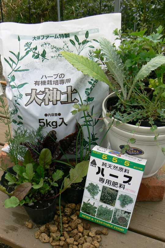herbs8