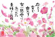 jiai-kosumosu