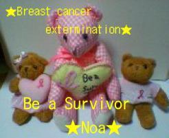 乳癌撲滅 ベア-