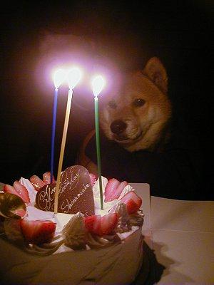2007年Birthday02