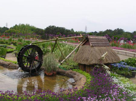 農村の夏風景.jpg
